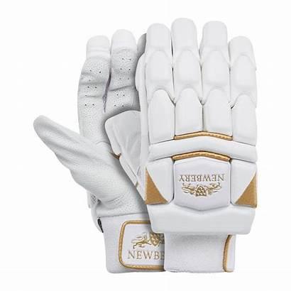 Cricket Gloves Batting Legacy Newbery Mr Protection
