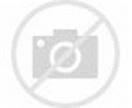 David Hewlett Biography  Profile  Pictures  News