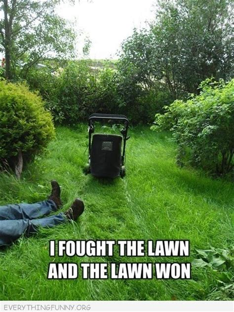 Turf Meme - 57 best images about lawn humour on pinterest