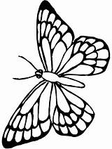 Butterfly Drawing Clip Line Worksheet Kindergarten Coloring Outline Guide Fly sketch template