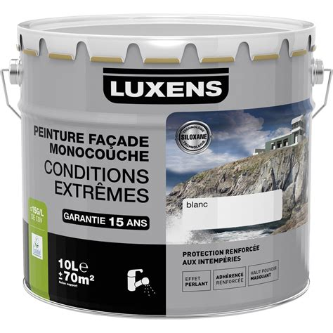 peinture fa 231 ade conditions extr 234 mes luxens meuli 232 re 10 l leroy merlin
