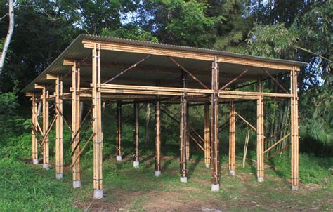 Pole Sheds For Sale 16x28x10 Equine Shed In Culpeper Va