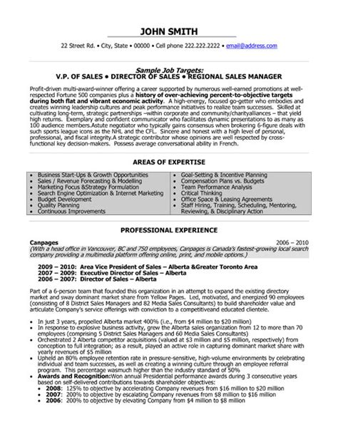 professional resumes are they worth the money or just a