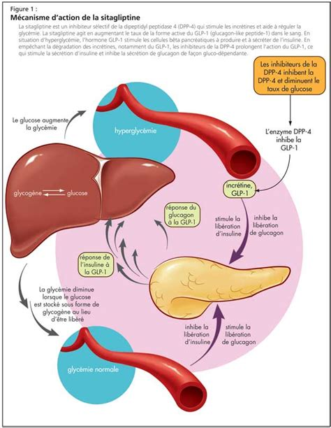 glucose intolerance diagnosis