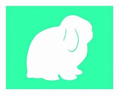 Lop Bunny Holland Clipart Rabbit Silhouette Bunnies