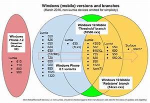Infographie  Quels Mobiles Peuvent Migrer Sous Windows 10