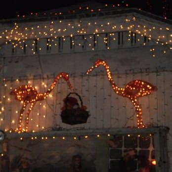 christmas lights st petersburg fl the oakdale christmas house 36 photos 14 reviews