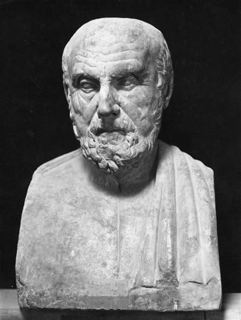 larousse cuisine fr encyclopédie larousse en ligne buste d 39 hippocrate