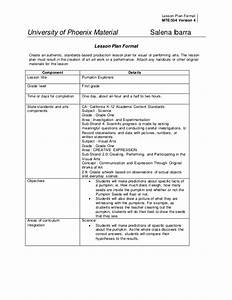 mte534 ltd integrated unit final With 6 point lesson plan template