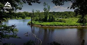 Setting Up Phone Best Trails In Rancocas State Park New Jersey Alltrails