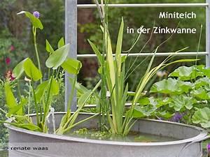Miniteich Anlegen Zinkwanne : gartenblog geniesser garten geniesser garten ~ A.2002-acura-tl-radio.info Haus und Dekorationen