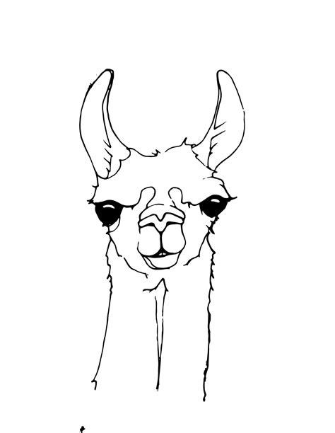Free Llama Head Cliparts Download Free Clip Art Free
