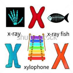 collectionodwn objects that start with the letter x