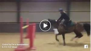 This Is Why You Should Learn To Ride English Before Attempting To Jump A Horse   U2013 The Horseaholic