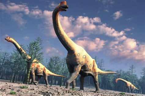 Dinosaurs Grazed On Psychedelic Fungus New York Post