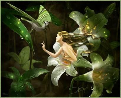 Fairies Fairytale Fairy Enchanted Gadgets Blogger Test
