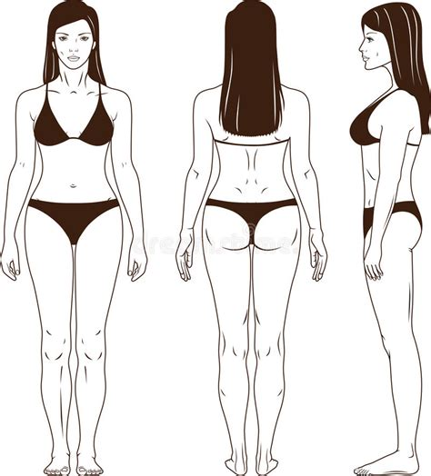 naked standing woman vector stock vector illustration