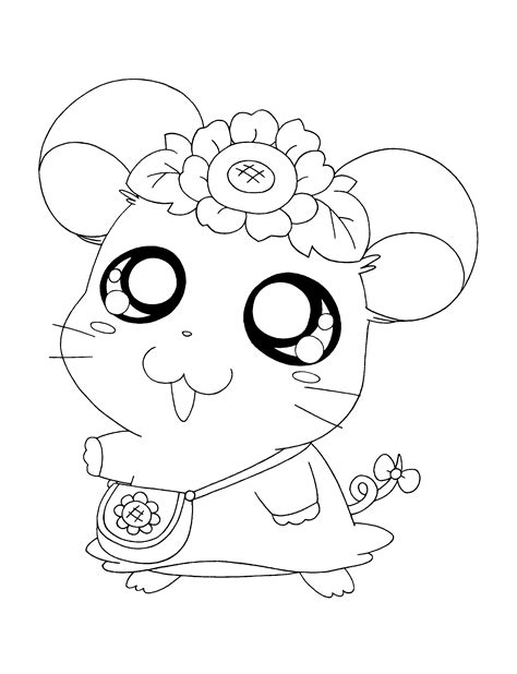 story  friendship  bonding   hamster hamtaro  hamtaro coloring pages  printables