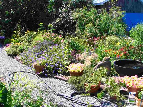 My Backyard Garden  Outdoor Furniture Design And Ideas