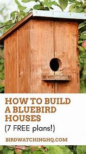 Bluebird Houses  The Definitive Guide  7 Free Plans