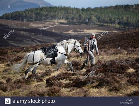 immobilien in schottland pony cap stockfotos pony cap bilder alamy