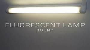 Fluorescent Lamp Sound