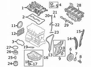 Kia Sportage Engine Oil Cooler Gasket  Engine Oil Filter