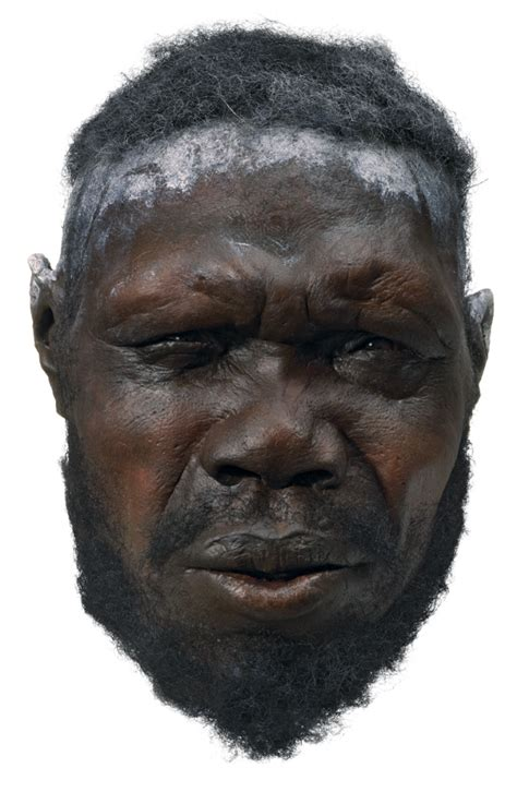 image gallery modern humans
