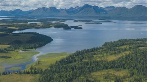 Image result for bristol bay