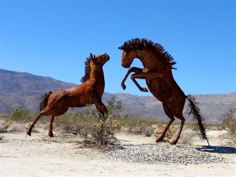 extinct horses california wild borrego meadows galleta springs