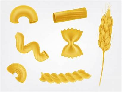 Pasta Vector Types Macaroni Realistic Illustration Clipart