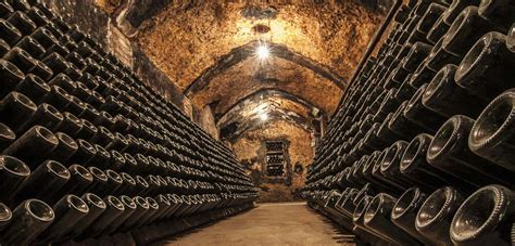 free wine cellar software bottle tags and products