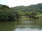 天元宮賞櫻,大屯自然公園,頂湖海芋@♡ 野兔窩♡ PChome 個人新聞台