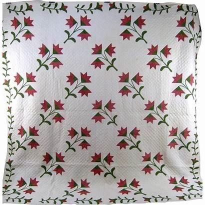 Quilt Lily Carolina Pattern Patterns Quilts Rubylane