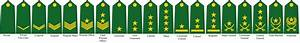 Rank Insignia of the Caliphate Armed Forces by tylero79 on ...