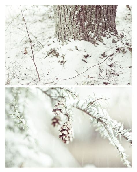 Idea by Leigh Ann Russell on White Winter scenes Winter