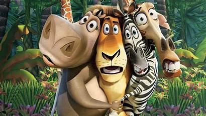 Madagascar Movie Movies Wallpapers Dreamworks Desktop Disney