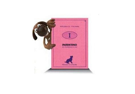 ufficio formazione asl pescara patentino per cani metro news 24