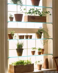 Greenhouse window Garden Club