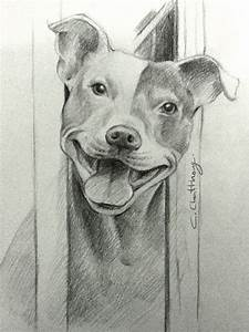 pitbull drawing by Chattravadee | my drawing in 2019 ...