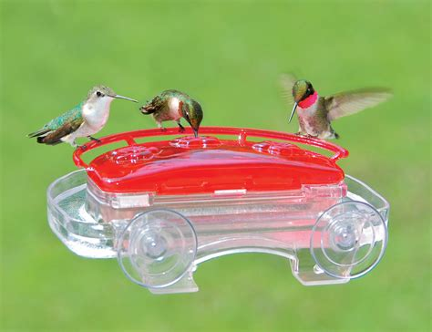 duncraftcom aspects jewel box hummingbird feeder