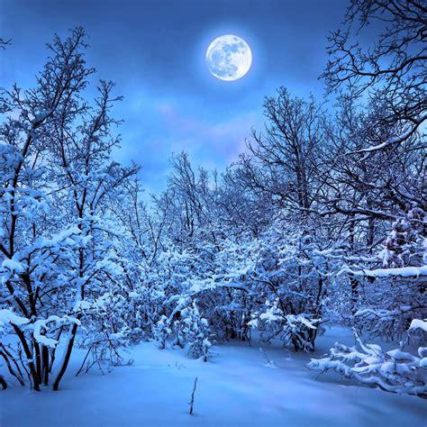 Winter 4k Wallpaper 3840×2160
