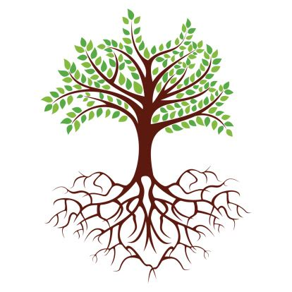 family tree with roots clipart picture of a tree with roots clipart best