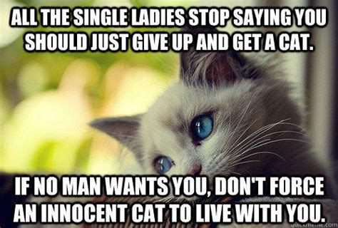 Cat Meme Ladies - all the single ladies stop saying you should just give up and get a cat if no man wants you