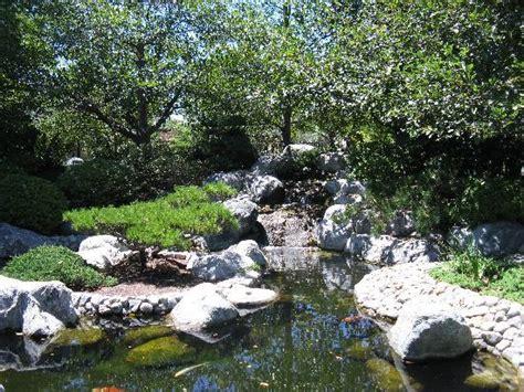 koi pond picture of japanese friendship garden san