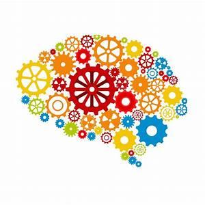 Studie: Das Lernen von Fremdsprachen kann unser Gehirn ...