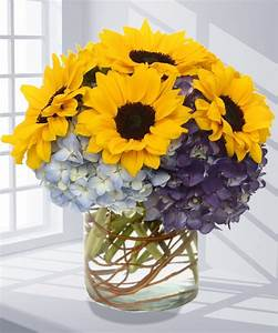 Sunflowers & Hydrangea Flower Arrangement, Carithers