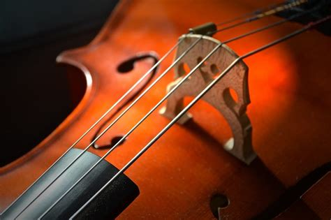 cello string measure music million quartet returned thief euros worth midhurst instrument musical foresta nova sizes parish church novinite sizing