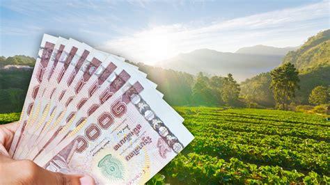 เช็กสิทธิ์ www.เยียวยาเกษตรกร.com ธ.ก.ส. เตรียมจ่ายเงินรอบ ...