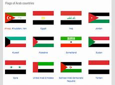 Why do almost all Muslim majority countries have Islamic